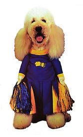 Pom Pom Cheerleader Pet Costume, Dog, Im