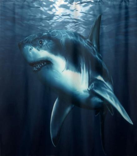 Sea%20Predator%20Shark%20Underwater_edit