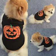 Halloween Pet Dog Pumpkin T Shirt Puppy