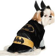 Batman Pet Costume..jpg
