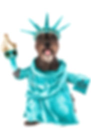 America Statue of Liberty Pet Dog Costum