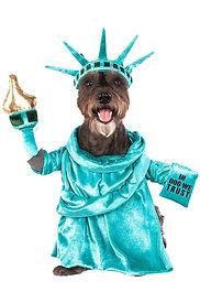 America Statue of Liberty Pet Dog Costum