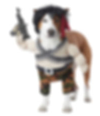 Rambo Action Hero Dog Pet Funny Costume.