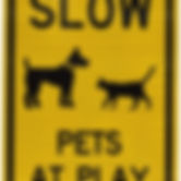 Pets at Play  with Graphic, 18 high  12
