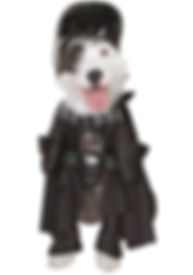 DARTH VADER DOG COSTUME.jpg