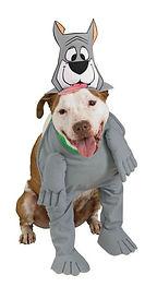 Astro Pet Costume.jpg