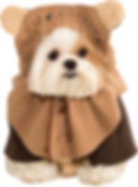 Ewok Pet Costume.jpg