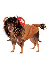 COWARDLY LION PET COSTUME.jpg