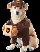 UPS%20dog_edited.png