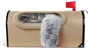 Cat Magnetic Mailbox Cover.jpg