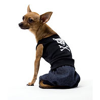 Bad Boy Dog Costume.jpg