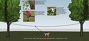Dog Run 100ft Aerial Overhead Trolley Zi
