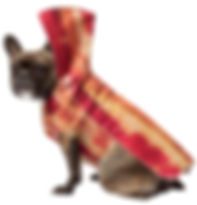 Bacon Dog Costume.jpg