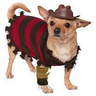 Freddy Krueger Dog Costume Funny Hallowe