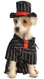 Gangster Pet Costume.jpg