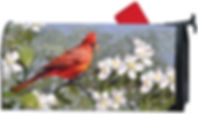 Cardinal in Blossoms Decorative Spring S