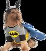batman%20pet_edited.png