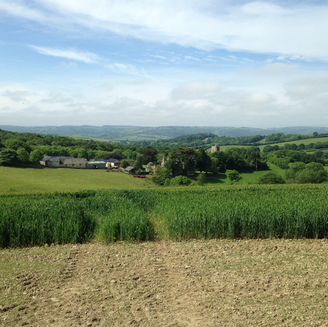 View over Holcombe Burnell Barton