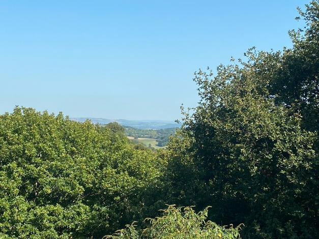 Stunning Devon views