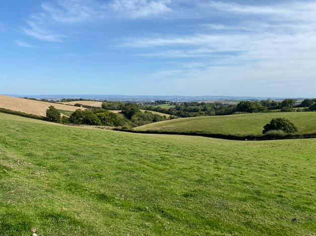 Longdown hills
