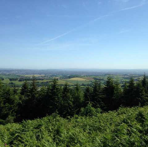 View from Haldon Forest - 15 mins drive