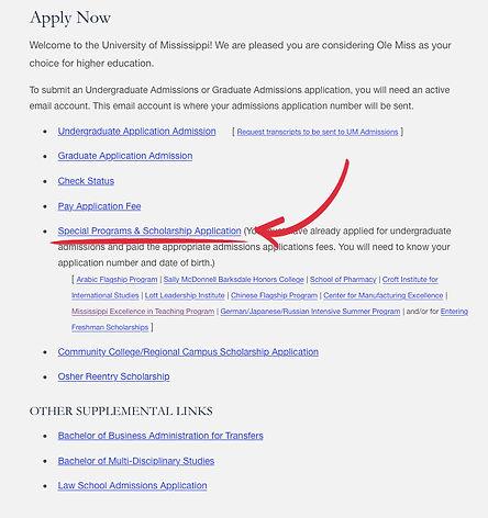 Apply Now screenshot of website