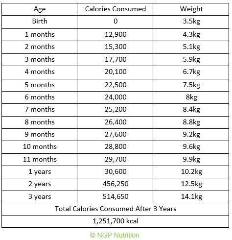 Total calorie intake from birth to 3 years