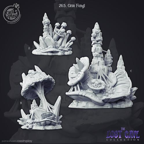 Cave Fungus