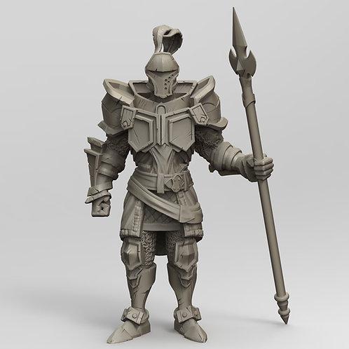 Paladin/Knight