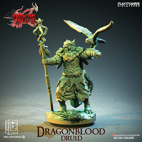 Dragonblood druid