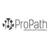 Pro Path.png