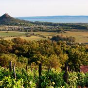 Balaton landscape -med.jpg