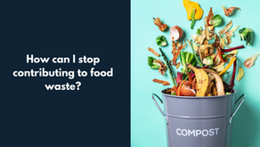 Three easy ways to stop food waste and shrink your carbon footprint