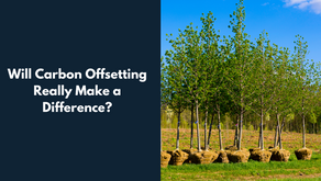 Will carbon offsetting really make a difference?