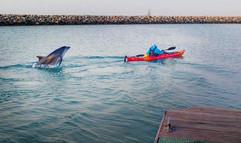 danny and kayak.jpg