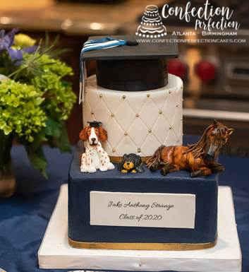 Graduation cake for the animal lover equestrian graduate!