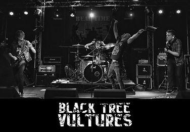 Black Tree Vultures.jpg