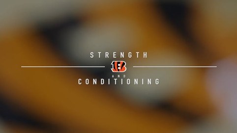 Bengals Strength