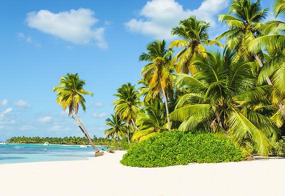 Südamerika_Beach.jpg