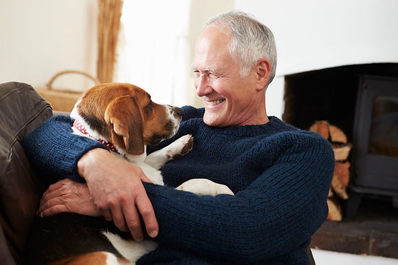Owning a pet in retirement: benefits and considerations
