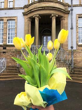 Spring Tulips.jpg