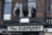 10 Elephant.jpg