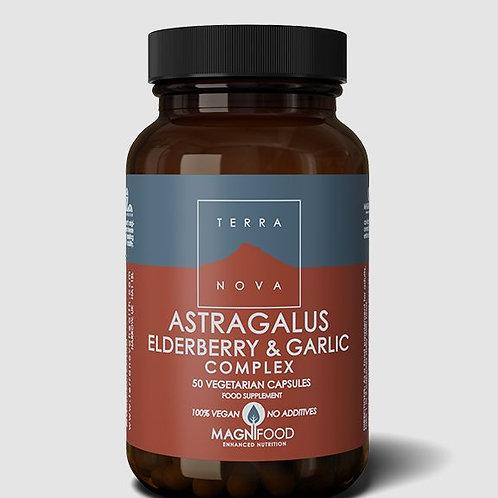 Terra Nova Astragalus, elderberry & garlic complex 50 caps