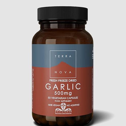 Terra Nova Garlic 50 caps