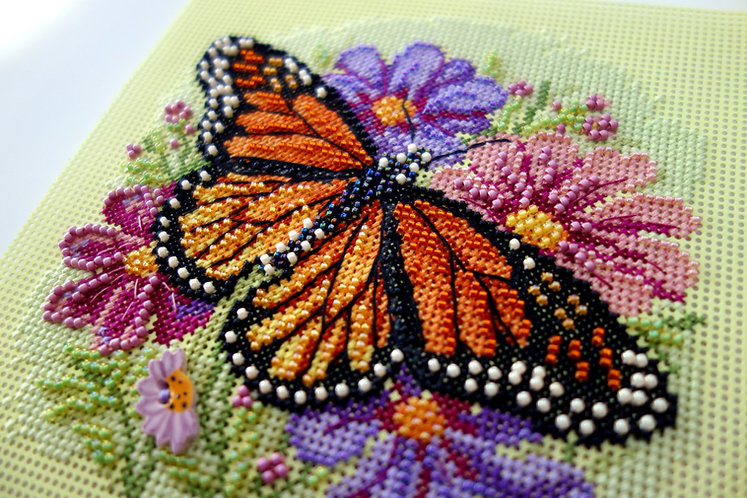The Mighty Monarch Butterfly on Colorful Daisies