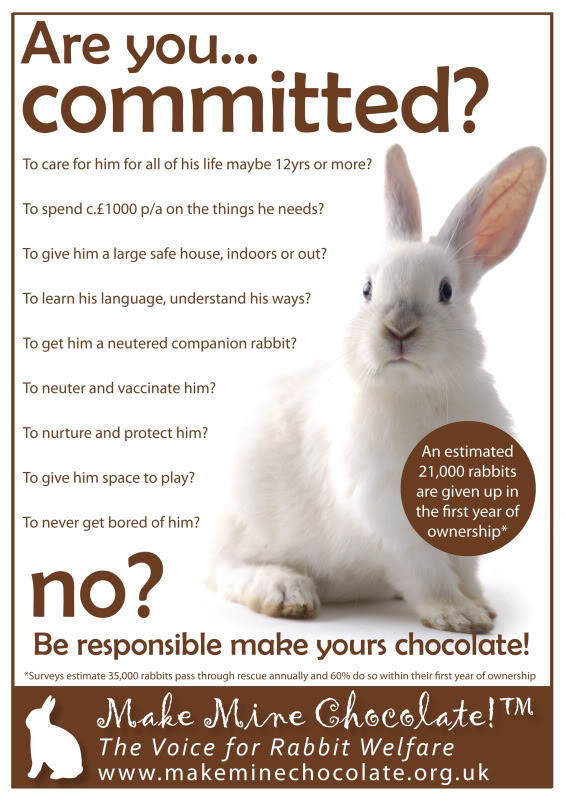 Do you have what it takes to look after a rabbit this easter. Think carefully before getting a bunny or any other animal for that matter.