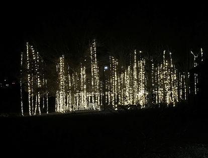 custom christmas light display