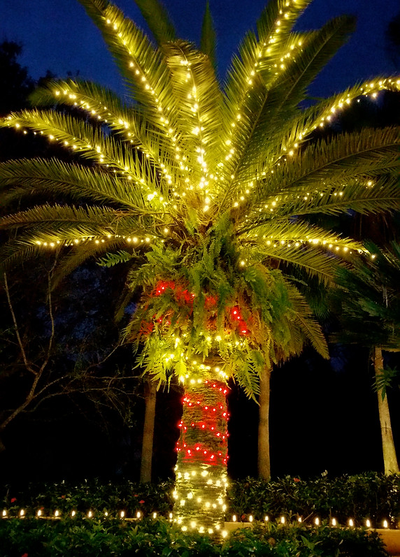 Commercial Christmas Lights.Professional Christmas Light Installation Florida East