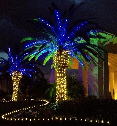 LED Christmas Lights, Palm tree lights, mini lights, LED mini lights, c9 LEDs, c9, LED