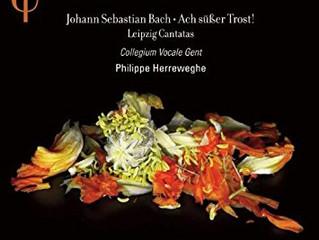 Bach: Schauet doch und sehet, ob irgendein Schmerz sei, BWV 46